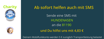 Charity SMS